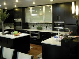 Black And White Interior Kitchen Decor Using Frosted Glass Door Espresso Cabinets With Acrylic Countertop In Modern Tips