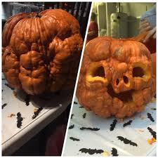 Lumpkin The Pumpkin by Lumpy Pumpkin Album On Imgur