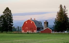Barn – Barnstorming Red Barn In Arkansas Red Hot Passion Pinterest Barns New Mexico Medical Cannabis Sales Up 56 Percent Patients 74 Barnhouse Country Stock Photo 50800921 Shutterstock Rowleys Barn Home Of Spoon Interactive Childrens Dicated On Opening Day Latest Img_20170302_162810 Growers Redbarn Wet Cat Food Two Go Tiki Touring Black Market The Original Choppers By Redbarn 100 Natural Baked Beef Chews For Dogs Meet The Team Checking Out Santaquin Utah Bully Stick