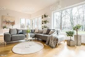 decken und kissen auf ecke grau sofa stehend in weiß wohnzimmer interieur mit frischen pflanzen große fenster und abstrakte malerei stockfoto und mehr
