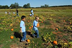 Pumpkin Patch Alabama Clanton by The Norton Family October 2011