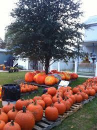 Kenova Pumpkin House by Kenova U0027s Famous Griffith Pumpkin House Home Facebook