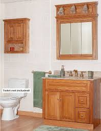 Brushed Nickel Medicine Cabinet With Mirror by Oak Medicine Cabinet With Lights Roselawnlutheran