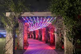 Lights in the Garden – Naples Botanical Garden – Monica Ramos