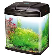 20l nano aquarium fish tank aquatics world