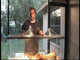 Reptile Heat Lamps Safety by How To Set Up A Snake Cage How To Choose A Heat Source For A