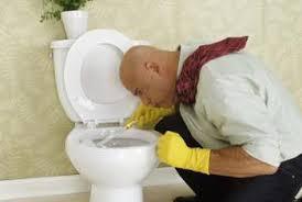 Serratia Marcescens Bathroom Treatment by Eliminate Toilet Bowl Ring Home Guides Sf Gate