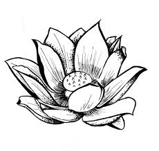 Download image clipart how to draw simple lotus flowers