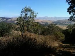 South San Jose Pumpkin Patch by The Top 10 Things To Do Near New Almaden Mercury Mining Museum