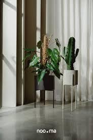 maki plant pot wide wohnung wohnen wohnzimmer