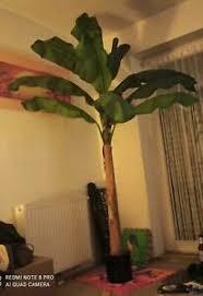 banan wohnzimmer ebay kleinanzeigen