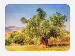 details zu natur badematte alte olivenbaum landschaft