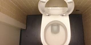 So many people have already dropped their iPhone 6 in the toilet