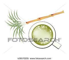 Beverage And Drink Illustration Of Fresh Sugarcane A Glass Sugar Cane Juice Isolated On White Background