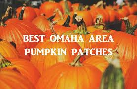 Skinny Bones Pumpkin Patch Food by Best Omaha Area Pumpkin Patches Wildlife Encounters