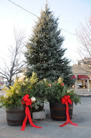 Christmas Tree Shop Foxboro Ma by Franklin Downtown Partnership October 2015