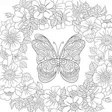 Butterfly Garden Beautiful Butterflies And Flowers Patterns For Relaxation Fun Stress Relief Colouring PagesAdult