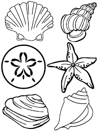 Hello Kitty Beach Coloring Pages Sea Shells