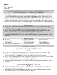 IT Security Resume Sample