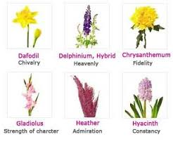 This photo of flowers and their different meanings reminds me of