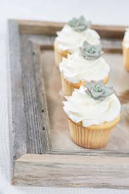 How Charming Are These Tiny Fondant Succulents On Mini Cupcakes Showing Us To Make Edible DIY Is Sarah Lange My Friend And Pastry