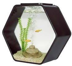 deco o mini aquarium 10 litre black product name deco o