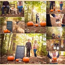 Shock Top Pumpkin Wheat Expiration Date by Fun And Creative Mother U0027s Day Pregnancy Announcements Fall