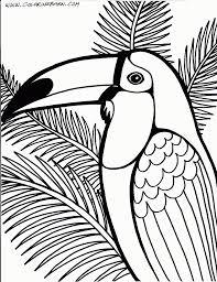 Jeu éducatif Livre De Coloriage Toucan Oiseau Doodle Cartoon Vecteur