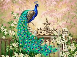 Wallpaperwiki Download Free Peacock Feathers Background PIC