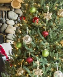 12 Ft Christmas Tree Canada by Lake Forest Fir Snap Tree Tree Classics