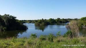 Sink Florida Sink Bass Tab by Florida Freshwater Pit Fishing