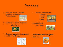 Pumpkin Pumpkin By Jeanne Titherington by The Pumpkin Patch Powerpoint Amanda Nehmer 8 Ppt Download