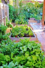 Garden Design Backyard Vegetable Garden Designs The Gardening ... Design Home Vegetable Garden Ideas Beautiful Plans Seg2011com Raised Bed At Interior Designing Small Space Gardening Fresh Best Decorations Insight With Interesting Designs 84 For Your Download House Gurdjieffouspensky Within Planner Layout 2018 Decorating Satisfying Intended Trends Home Design Ideas Affordable Idea