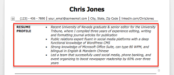 Resume Profile Example Examples