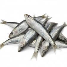 100 Mathi Sardines Fish 500gm