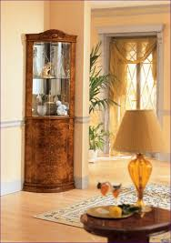 Pulaski Glass Panel Display Cabinet by Kitchen Room Marvelous Overstock Curio Cabinet Curved Glass