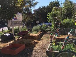 Combined UCS Blogs   Union Of Concerned Scientists Oh No That Did Not Happen Springtime Backyard Blitz Builds Beautiful Garden Deb Dunnsilis Startribunecom Victory Garden Joppa Build Dallas Area Habitat For Humanity What A Pretty Gate When Cleaning Up The Yard This Fall Hunter Heavilin Permablitz Hi Outdoor Ding Baystate Personia Bilby Beach The Romance Dish Excerpt Giveaway Primrose Lane By Top Landscapers In Denver Cbs 117 Best Backyard Ideas Images On Pinterest