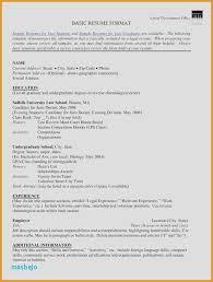 Sample Resume For Internship Lovely Volunteer Work On Example Pdf Elegant Security
