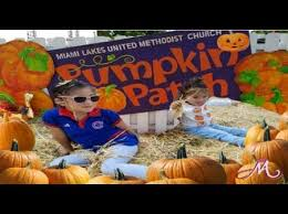 Pumpkin Patch Near Bay Area by Pumpkin Patches Axs
