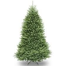 7 Ft Slim Xmas Trees by Traditional Christmas Trees Charlies Direct