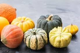 Varieties Of Pumpkins by Different Varieties Of Pumpkins And Gourds Food U0026 Drink Photos