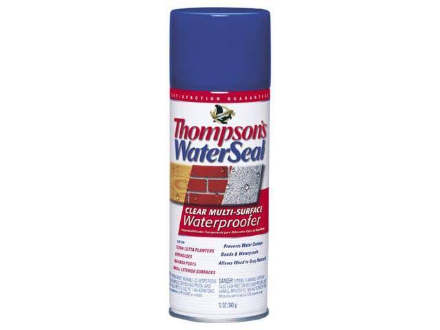 Thompson's Water Seal Multi-Surface Waterproofer - Clear, 12oz