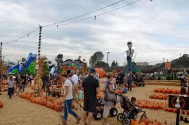 Pumpkin Patch Jefferson Blvd Culver City by Mr Bones Pumpkin Patch U2022 Gaelle In Los Angeles