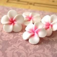 4 fleurs de frangipanier en pate fimo 24 mn pinteres
