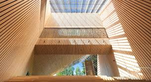 100 Patkau Architects Amazing Elevated Museum Lets You Stroll Through The Treetops