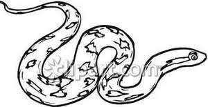 Cute Snake Clipart Black And White