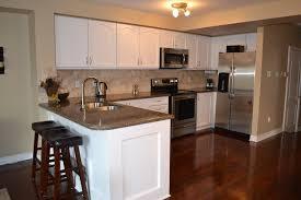Basement Kitchen Design Ideas On A Budget Marvelous Basements Home Pictures