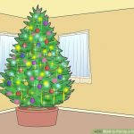 Xmas Tree Waterer by Christmas Tree Watering Tips U2013 How To Get A Christmas Tree To Take