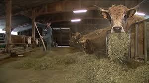 chambre d agriculture lozere lozère sept éleveurs de la race aubrac présents au salon de l