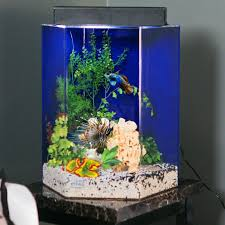 Fish Tank Bar Top Best Gallon Aquarium Stand Ideas On Tank Stand ... I Really Want A Jellyfish Aquarium Home Pinterest Awesome Fish Tank Idea Cool Ideas 6741 The Top 10 Hotel Aquariums Photos Huffpost Diy Barconsole Table Mac Marlborough Tank Stand Alex Gives Up Amusing Experiments 18 Best Fish Images On Aquarium Ideas Diy Clear For Life Hexagon Hayneedle Bar Custom Tanks Ponds Designs For Freshwater Modern 364 And Tropical Ov Cylinder 2